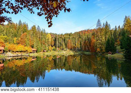 Warm Sunny Autumn Day In A Park Near Lake Vita, Carpathian Mountains, Ukraine. Leaf Fall Landscape,