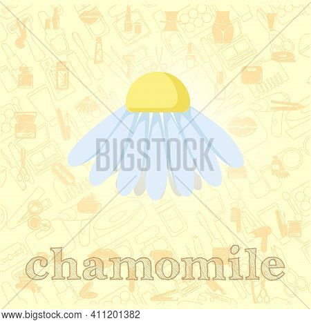 Chamomile Flower Vector Flat Illustration, Chamomile Vector Illustration