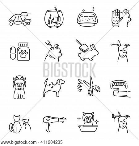 Collection Of Pet Care Line Icon Vector Illustration. Set Of Different Lineart Veterinary Sign