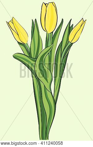 Yellow Tulips. Bouquet. Vector. Garden Flowers. The Symbol Of Spring, A Gift To Woman. Three Bright