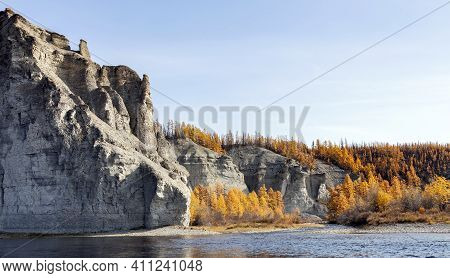 Shore Of The Wild Siberian Taiga River On A Clear Autumn Day. Larch Orange September Taiga On The Ba