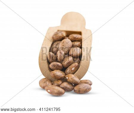 Pile Of Pinto Beans Isolated On White Background.clipping Path