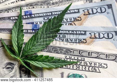 Legality Of Cannabis, Legal And Illegal Cannabis On The World.marijuana Cannabis Business Concept. M