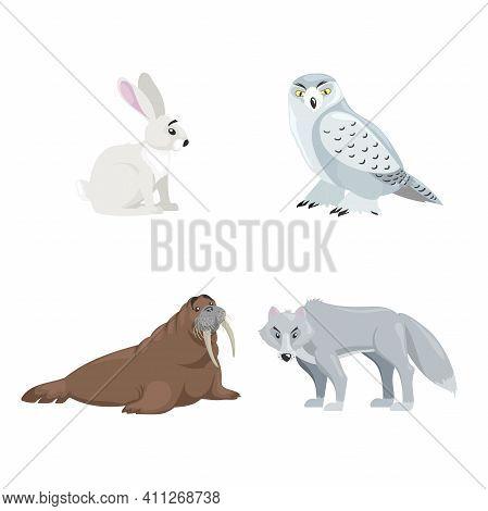 Arctic Animals Set. Polar Hare, Snow Owl, Walrus And Polar Wolf. Cartoon Flat Design. Vector Illustr