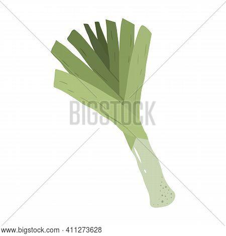 Green Leek In Hand Drawn Style. Vector Illustration Of Fresh Vegetable.