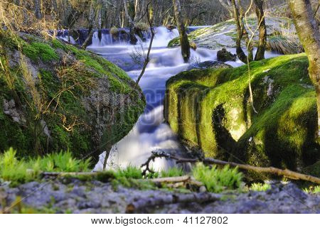 Beautyful river waterfall forest