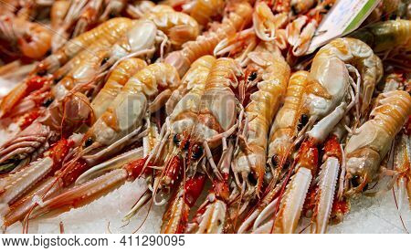 Fresh Langoustines Lying On Ice For Sale At The Boqueria Market, Barcelona, Spain.