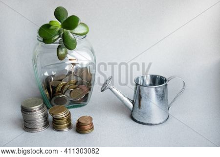 A Seedling Grows Out Of A Glass Jar With Coins. A Sprout Grows In The Jar. On The Table Are Stacks O