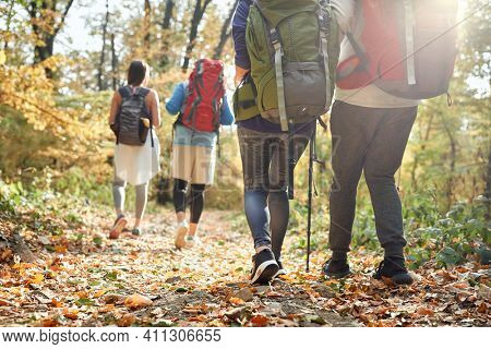 Hikers at autumn hiking in nature, back view