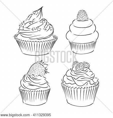 Cute Cupcakes Set Isolated On White Background. Vector Illustration. Cupcake Vector Sketch On A Whit