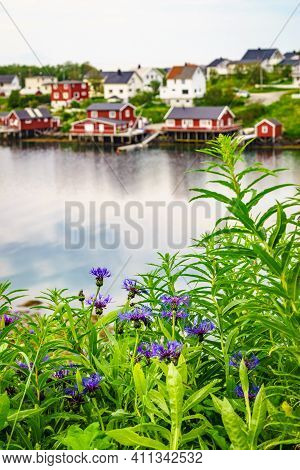 Fjord Coast Landscape. Spring Flowers And Typical Norwegian Fishing Village With Traditional Red Ror