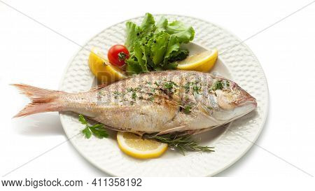 Tasty And Delicious Fish In White Plate With White Background, Grilled And Fried Fish, Healthy And F