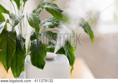 Close Up Of Aroma Oil Diffuser On The Table At Home, Steam From The Air Humidifier, Houseplant On Ba