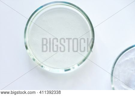 Glass Petri Dishes Witn Agar Substrat On A Laboratory Table. Sterile Lab Dishes Ready For Tests. Ana