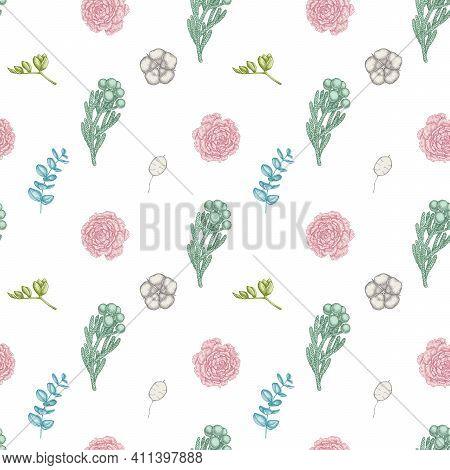 Seamless Pattern With Hand Drawn Pastel Ficus, Eucalyptus, Peony, Cotton, Freesia, Brunia Stock Illu