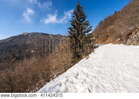 Mountain Peak Of Corno D'aquilio In Winter With Snow. Lessinia Plateau (altopiano Della Lessinia), R