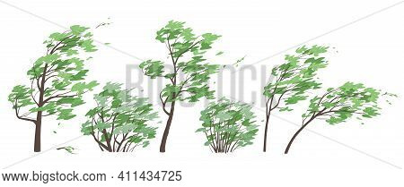 Set Of Trees And Bushes With Green Leaves Isolated On White Background. Deciduous Tree In Blowing Wi