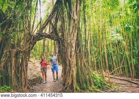 Hawaii hike hikers walking in lush rainforest trekking and hiking amongst banyan trees and bamboos, Oahu Travel. Couple tourists happy in nature.