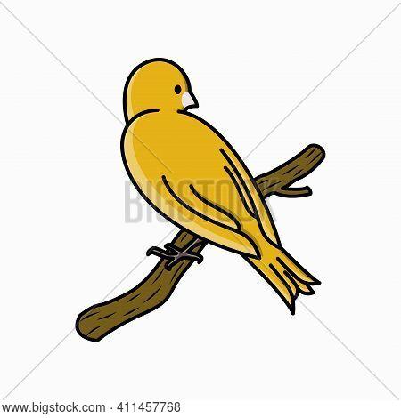 Bird. Bird Vector. Bird Illustration. Canary Bird. Animal Vector.
