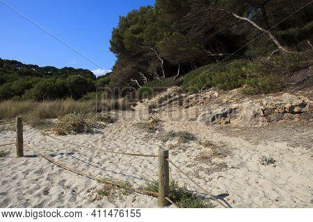 Cala Trebaluger, Menorca / Spain - June 22, 2016: Dunes Regeneration Area At Cala Trebaluger Bay, Mi
