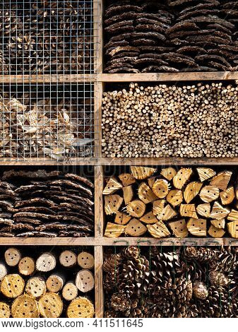 Insect Hotel, House Made From Wood In Garden To Protect Insect
