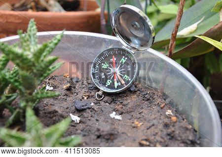 Compass. Compass In Flower Garden Of Residence, With Several Plants In Pots Of Different Sizes In Zo