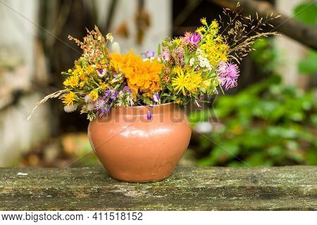 Earthenware Pot And Wildflowers. Early Spring Wildflowers In A Pot.