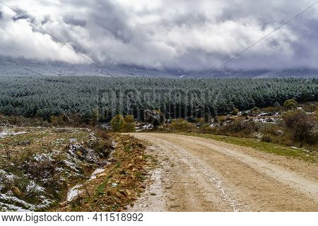 Snowstorm Sky Landscape Over Countryside And Snowy Trees. Dirt Road To The Mountain. Snow Concept.