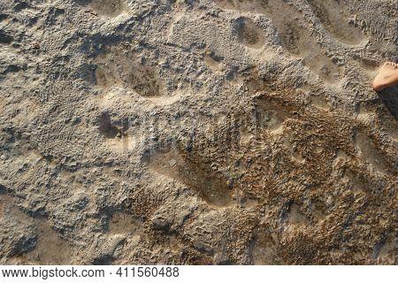Surface Of Pamukklale Travertines. Iron Deposits On The Surface At Pamukkale Travertines.