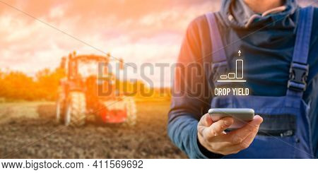 Intelligent Agriculture Concept With Crop Yield. Farmer Or Agrarian With Smart Phone Looking On Grow