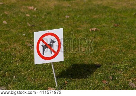 No Dogs Allowed Sign Located On A Green Grass In A Public Park In Switzerland