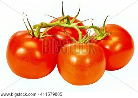 Horizontal Shot Of Four Red Ripe Tomatoes On The Vine On A White Background.  This Is A Revised Imag