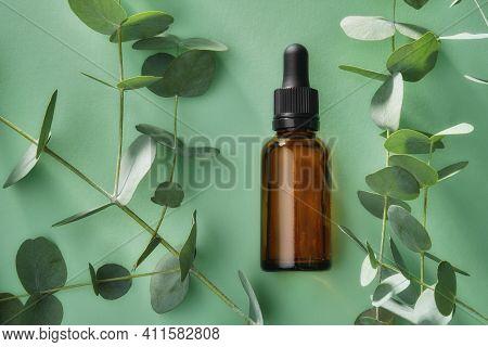 Bottle Of Eucalyptus Oil And Eucalyptus Tree Leaves On Green Background.