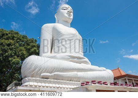 The White Giant Buddha Statue In Sri Maha Bodhi Viharaya Located On The Top Of Small Hill In Kandy C