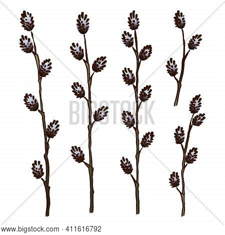 Spring Set With Hand-drawn Sketches Of Young Willow Twigs With Blue Furry Buds Isolated On A White B
