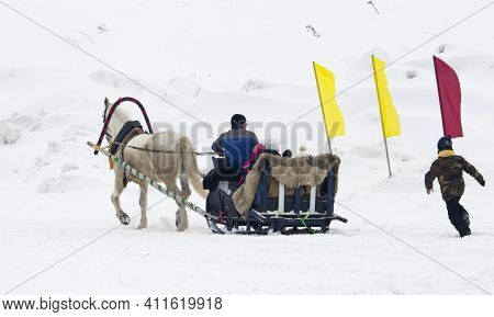 Novocheboksarsk, Russia-february 27, 2021. White Horse Harnessed To A Sleigh In Winter, Horseback Ri