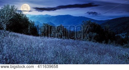 Rural Field In Mountains At Night. Beautiful Summer Landscape Of Carpathian Countryside In Full Moon