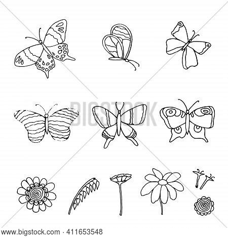 Set Of Butterflies And Flowers Drawn With Feather And Ink, Isolated On White Background, Vector Illu