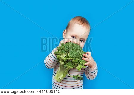 Todler With Broccoli On Blue Background, Healthy Baby Food. Complementary Feeding Of Child With Vege