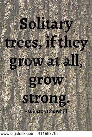Solitary trees, if they grow at all, grow stronger quote by winston churchill over tree bark. famous quotes, motivation, support and inspiration concept digitally generated image.