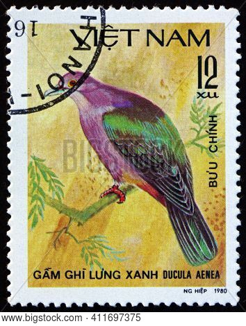 Vietnam - Circa 1981: A Stamp Printed In Vietnam Shows Green Imperial Pigeon, Ducula Aenea, Is A Lar