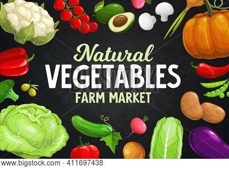Fresh Farm Vegetables, Beans, Mushrooms And Olives On Blackboard. Vector Veggie Food Of Peppers, Tom