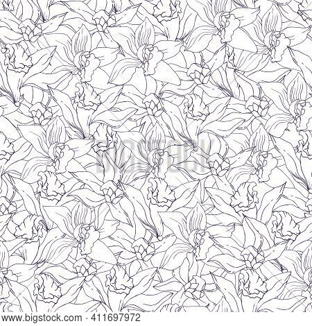 Tropical Black And White Seamless Pattern Contour Vanilla Flowers. Vector Sketch Of Tropical Flowers