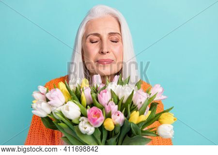 Photo Of Peaceful Charming Elderly Woman Smell Flowers Tulips Wear Orange Sweater Isolated On Teal C