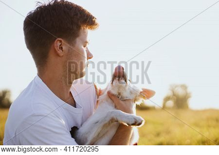 Young Handsome Man Playing With Funny Cute White Puppy In Warm Sunset Light In Summer Meadow. Person