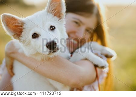 Happy Woman Hugging  And Cuddling Cute White Puppy In Warm Sunset Light In Summer Meadow. Happiness