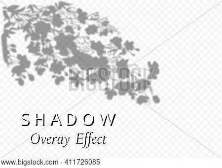 Shadow Overlay Effect. Transparent Soft Light And Shadows From Plant Branches, Leaves And Foliage. M