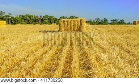 Bale Of Hay. Agriculture Farm And Farming Symbol Of Harvest Time With Dried Grass Straw As A Bundled