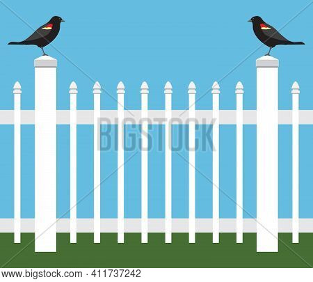 Two Similar Birds Are Standing On A Picket Fence Staring At Each Other