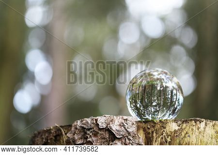 Earth Day Concept.ecological Concept.glass Ball With Forest Reflection On A Stump In The Forest. Env